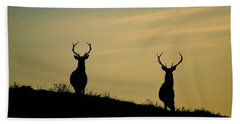 Red Deer Stags  Hand Towel