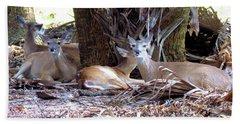 4 Wild Deer Bath Towel by Rosalie Scanlon