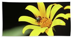 Wild Sunflower Stony Brook New York  Hand Towel