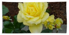 4 Yellow Roses Bath Towel by Shirley Heyn