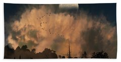 4234 Hand Towel by Peter Holme III