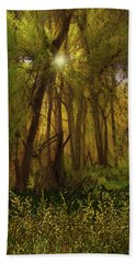 4368 Hand Towel by Peter Holme III