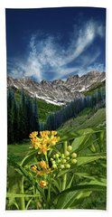 Hand Towel featuring the photograph 4415 by Peter Holme III