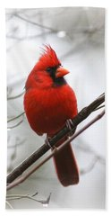 4772-001 - Northern Cardinal Hand Towel by Travis Truelove
