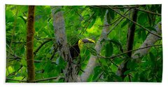 Chestnut-mandibled Toucan Bath Towel