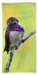 Costas Hummingbird  Bath Towel