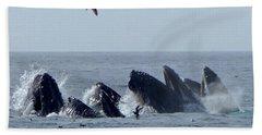 5 Humpbacks Lunge Feeding  Hand Towel