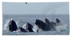 5 Humpbacks Lunge Feeding  Bath Towel