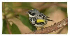 Yellow-rumped Warbler Bath Towel by Alan Lenk