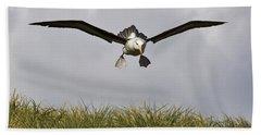 Black-browed Albatross Hand Towel by Jean-Louis Klein & Marie-Luce Hubert