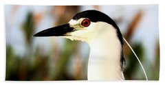 Black Crowned Night Heron Hand Towel