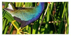 Purple Gallinule Hand Towel
