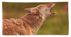 Coyote Hand Towel