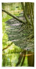 cypress forest and swamp of Congaree National Park in South Caro Hand Towel