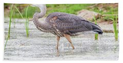 Great Blue Heron Hand Towel by Ricky L Jones