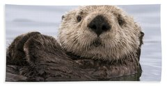 Sea Otter Elkhorn Slough Monterey Bay Hand Towel by Sebastian Kennerknecht