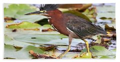 Green Heron Bath Towel