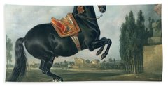 A Black Horse Performing The Courbette Hand Towel