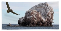 A Brown Pelican Does A Flyby Of A Guano Covered Desert Island  Hand Towel