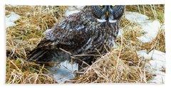 A Close Encounter - Great Gray Owl Bath Towel