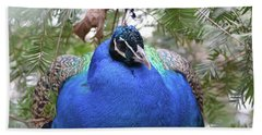 A Close Up Look At A Blue Peafowl Bath Towel by DejaVu Designs