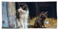 A Day In The Life Of A Barn Cat Hand Towel by John Rivera