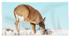A Deer Playing In Snow Bath Towel