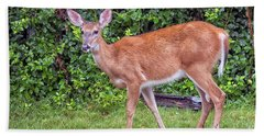 A Deer Young Lady Hand Towel