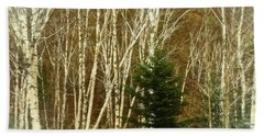 A Digital Art Photograph  Of   A Stand Of White Birch Trees In N Bath Towel
