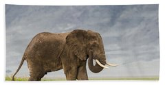 Hand Towel featuring the photograph A Gentle Giant by Sandra Bronstein