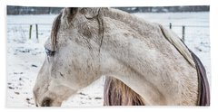A Girlfriend Of The Horse Amigo Hand Towel