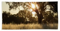 Hand Towel featuring the photograph A Golden Afternoon by Linda Lees