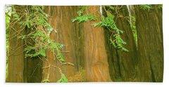 A Group Giant Redwood Trees In Muir Woods,california. Bath Towel