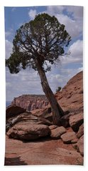 Hand Towel featuring the photograph A Lone Tree by Frank Madia