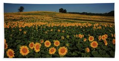 Bath Towel featuring the photograph A Lot Of Birdseed  by Chris Berry