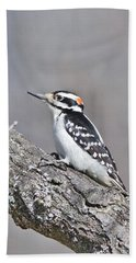 Bath Towel featuring the photograph A Male Downey Woodpecker 1120 by Michael Peychich