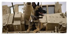 A Military Working Dog Sits On A U.s Hand Towel