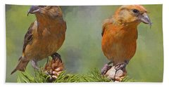 A Pair Of Male Red Crossbills - Painted Hand Towel