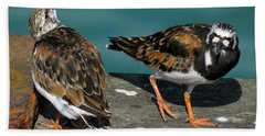 A Pair Of Turnstones Bath Towel