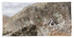 A Ruddy Turnstone Perched On The Rocks Hand Towel