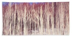 A Stand Of White Birch Trees In Winter. Hand Towel