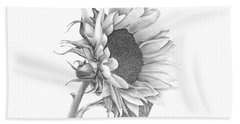 Hand Towel featuring the drawing A Sunflowers Beauty by Patricia Hiltz