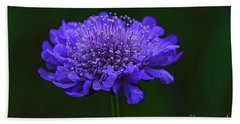 A Sweet Scabiosa Bath Towel