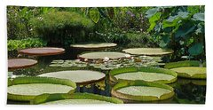 Hand Towel featuring the photograph A Water Garden by Byron Varvarigos