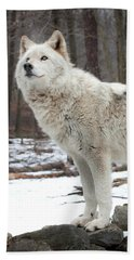 A Wolfs Modeling Pose Bath Towel