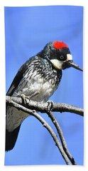 Acorn Woodpecker Close Bath Towel