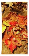 Bath Towel featuring the photograph Acorns Fall Maple Leaf by Meta Gatschenberger