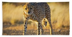 African Cheetah Hand Towel by Inge Johnsson