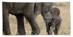African Elephant Mother And Under 3 Hand Towel