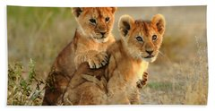 African Lion Cubs Hand Towel